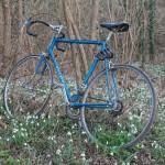 Mein Fahrrad im Feld der Schneeglöckchen