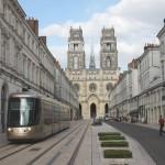 Limace d'Orléans