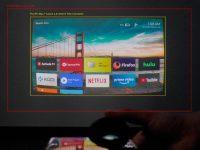 PicoPix Max + Canon 1.4 55m Teleconverter